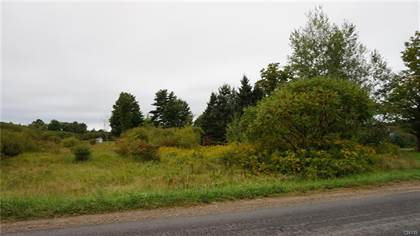 Lots And Land for sale in 0 State Route 13, Richland, NY, 13142