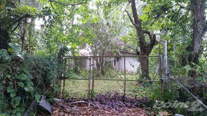 Lots And Land for sale in Camino Las Orquideas, Barranquitas, PR, 00794