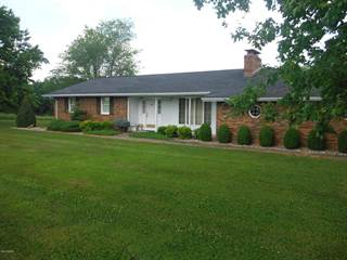 Single Family for sale in 6615 Highway 51, Dongola, IL, 62926
