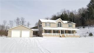Single Family for sale in 2902 North Nine Mile Road, Greater St. Bonaventure, NY, 14706