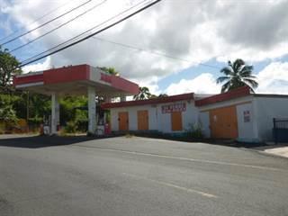 Comm/Ind for sale in 149 CARR 149 KM 23.1 BO. TORO NEGRO, Manati, PR, 00674