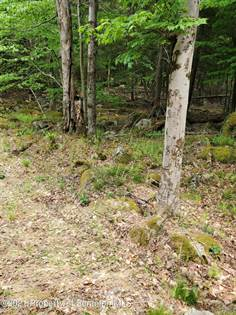 Lots And Land for sale in 30 Ironwood Dr, Newfoundland, PA, 18445