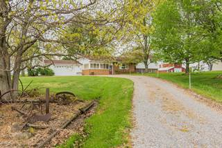 Single Family for sale in 14039 Thompsonville Road, Macedonia, IL, 62860