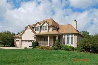 Single Family for sale in 13304 N TERRITORIAL Road, Chelsea, MI, 48137