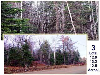 Land for rent in Lot  5 Brown Road, Oakfield, ME, 04763