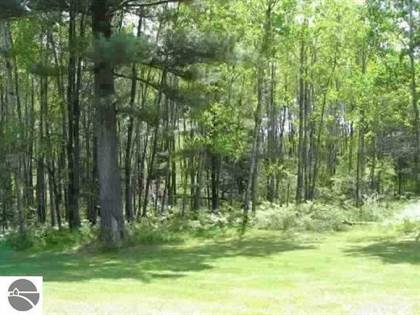 Lots And Land for sale in 0 WHITE PINE DRIVE, Cadillac, MI, 49601