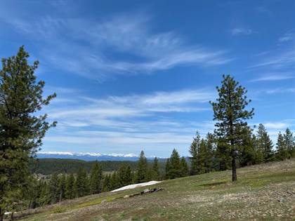 Lots And Land for sale in Lot 18 Harrington Place, McCall, ID, 83638
