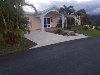 Single Family for sale in 29 PR-726, Caonillas, PR, 00705