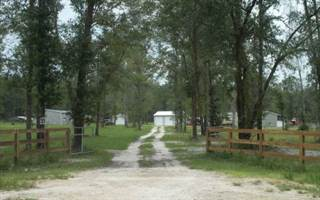 Residential Property for sale in 5646 RIVER ROAD, Live Oak, FL, 32060
