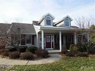 Single Family for sale in 903 N THEODORE Street, Roanoke, IL, 61561