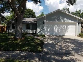 Single Family for sale in 262 MYRTLE COURT, Palm Harbor, FL, 34683