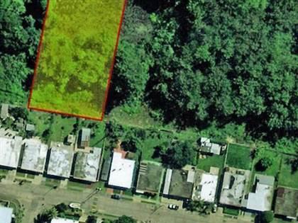 Residential Property for sale in Carretera BAJURA, MIRADERO, CABO ROJO, Cabo Rojo, PR, 00623