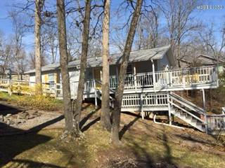 Single Family for sale in 385 Lakeshore Drive, Goreville, IL, 62939
