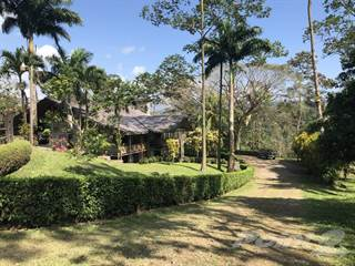 Farm And Agriculture for sale in A beauty in a Mountain surrounded by nature, San Ramon, Alajuela