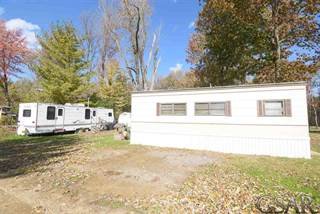 Condo for sale in 965 Tyrrell Lot 85 and 86 85 & 86, Bancroft, MI, 48414