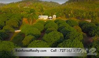 Farm And Agriculture for sale in Farm for Sale in Belize with 2 Homes, San Ignacio, Cayo