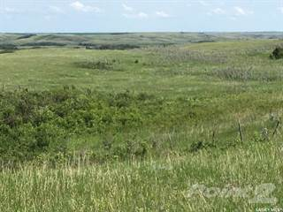 Farm And Agriculture for sale in RM of Biggar, Biggar, Saskatchewan