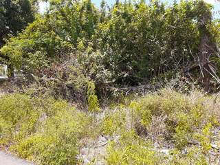 Lots And Land for sale in 1525 LANCIA DRIVE, Hammock Park, FL, 33872