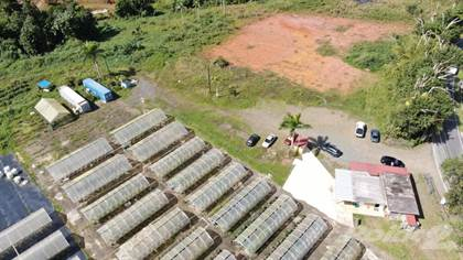 Farm And Agriculture for sale in Carretera 779 km 8.6, Barranquitas, PR, 00794