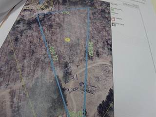 Land for sale in 31 BAMBI ROAD, Maxton, NC, 28364