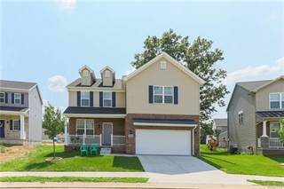 Single Family for sale in 219 Crystal Wood Circle, Marion, MI, 48843