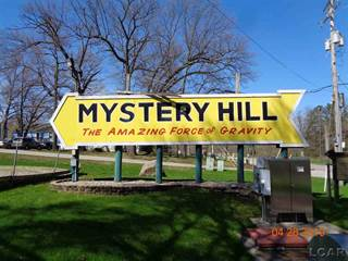 Comm/Ind for sale in 11900 Boardman 7611 W US12  Mystery Hill, Onsted, MI, 49265