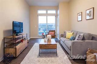 Apartment for rent in Flats on Fifth   1 Bedroom Suite H  Pittsburgh  PAHouses   Apartments for Rent in 15219 PA   From  565 a month  . Apartments For Rent Pittsburgh Pa 15219. Home Design Ideas