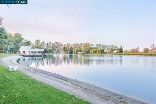 Land for sale in 1000 Petite Sirah Ln, Brentwood, CA, 94513