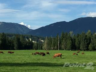 Residential Property for sale in Robson Valley, McBride, British Columbia