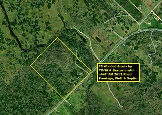 Residential Property for sale in 6496 FM 2611, Brazoria, TX, 77422