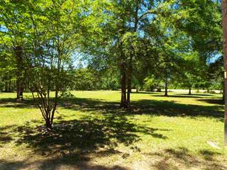 Land for sale in 5064 County Road 3114, Buna, TX, 77612