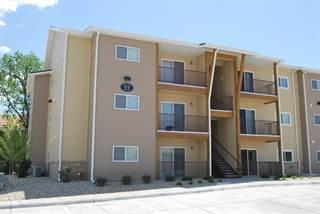 Apartment for rent in Scenic Woods - 401 Hunter Pl - 1 Bed 1 Bath Aspen, Manhattan, KS, 66503
