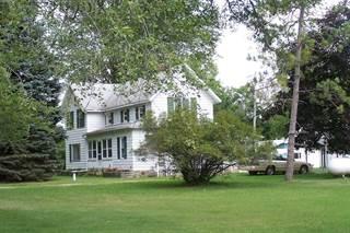 Single Family for sale in 10500 N Antcliff, Cohoctah, MI, 48836