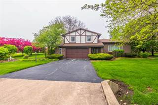 Single Family for sale in 15613 Crestwicke Drive, Greater Heyworth, IL, 61705
