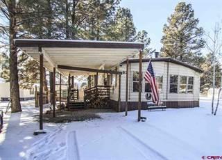 Single Family for sale in 82 Bonanza Avenue, Pagosa Springs, CO, 81147