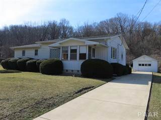 Single Family for sale in 304 TERMINAL, East Peoria, IL, 61611