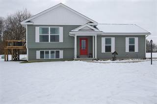 Single Family for sale in 5510 Loop Road, Dorsey, IL, 62021