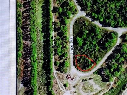Lots And Land for sale in CAPER CIRCLE, North Port, FL, 34288