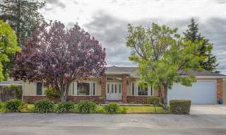 Single Family for sale in 1149 Peggy AVE, Campbell, CA, 95008