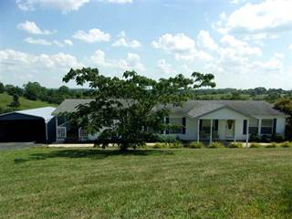 Single Family for sale in 4515 Highway 22, Falmouth, KY, 41040