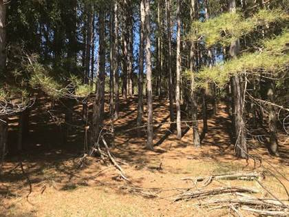 Lots And Land for sale in #32 Rd, Carney, MI, 49812