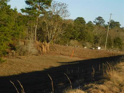 Lots And Land for sale in W Hwy 280, Reidsville, GA, 30453