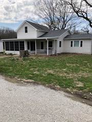 Single Family for sale in 109 South Stoddard, Ramsey, IL, 62080