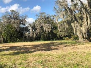 Land For Sale Combee Settlement Fl Vacant Lots For Sale In Combee