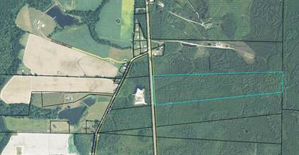 Lots And Land for sale in 54.88 ac US Highway 129, Abbeville, GA, 31001