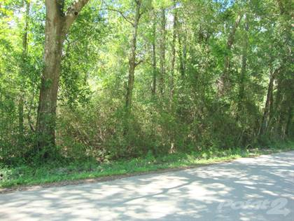 Lots And Land for sale in 330 County Road 835, Buna, TX, 77612