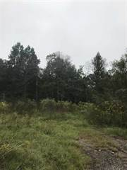 Land for sale in 909 Cougar Country Rd, Buna, TX, 77612