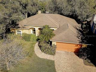 Single Family for sale in 13010 CREEK MANOR COURT, Riverview, FL, 33569