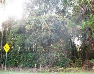 Photo of 297 UNION AVE, 32112, Putnam county, FL