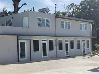 Comm/Ind for rent in Carr. 172 KM 19.5, Caguas, PR, 00727